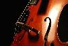 Cellonet