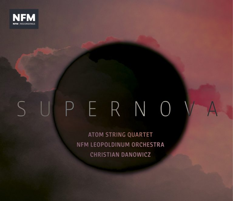 Read more about the article Supernova